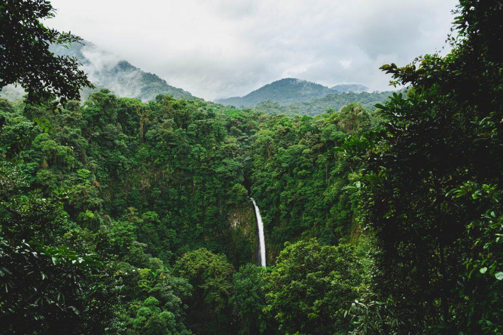 Meilleure période pour partir au Costa Rica