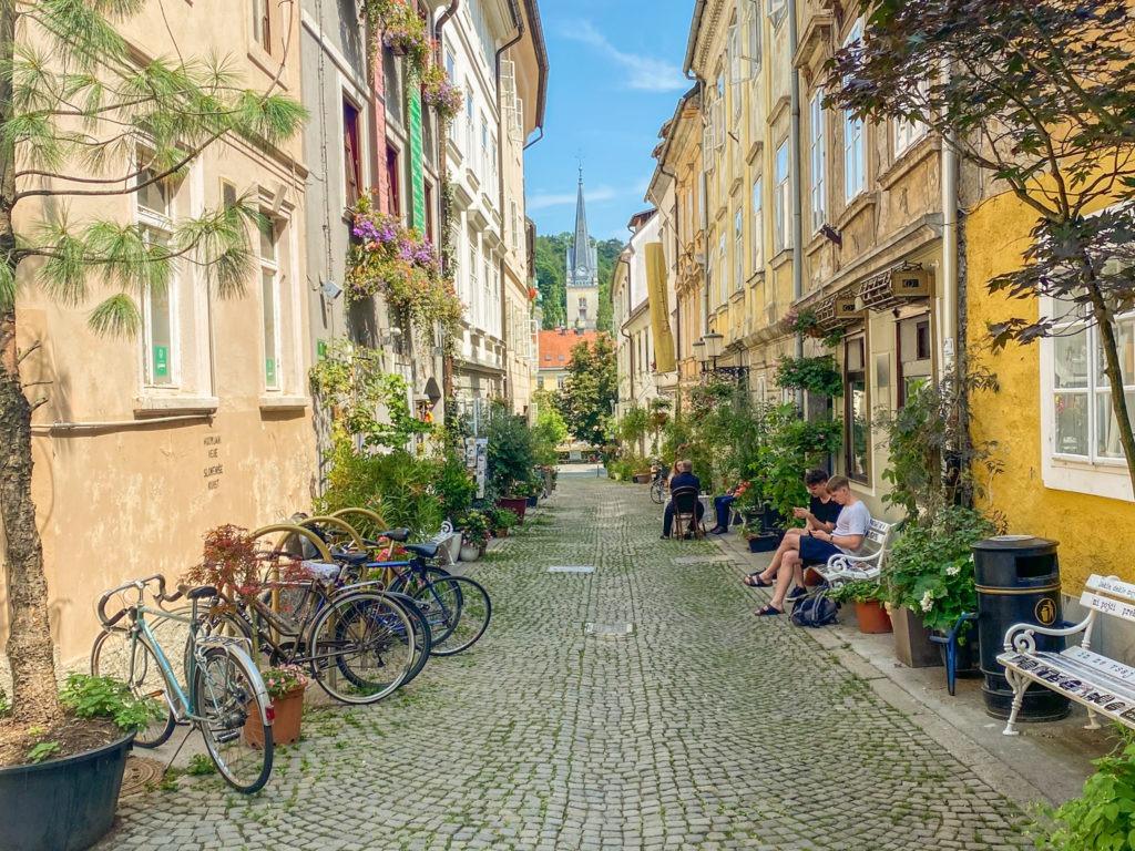 Rue verte à Ljubljana